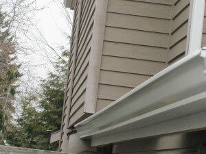 Bellevue Gutter Contractor