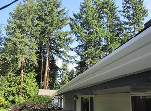 seattle gutter contractor